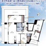 最上階100㎡越えのペントハウス(間取)